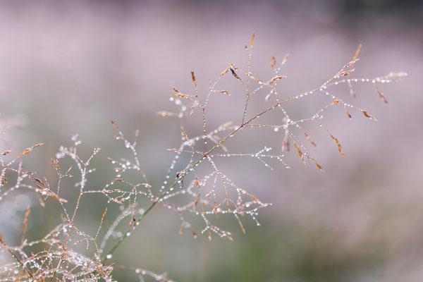 Grußkartenshop - Lieblingsbild Michaela Eggmann Fotografie